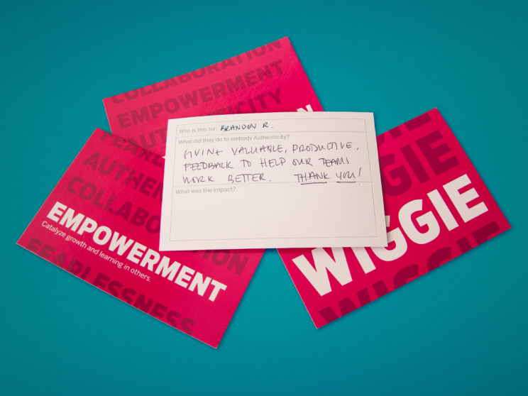 "Indiegogo ""Iggies and Wiggies"" Internal Positive Feedback"